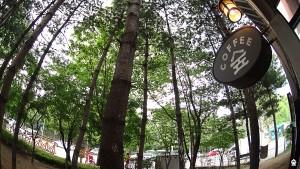 카페 숲 서울여대 주변 카페