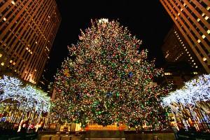 nyc-christmas-2011-11